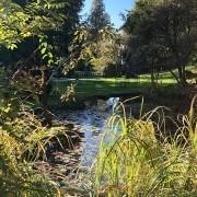 Blick auf den Tölzer Park von der Mentalcoaching Akademie